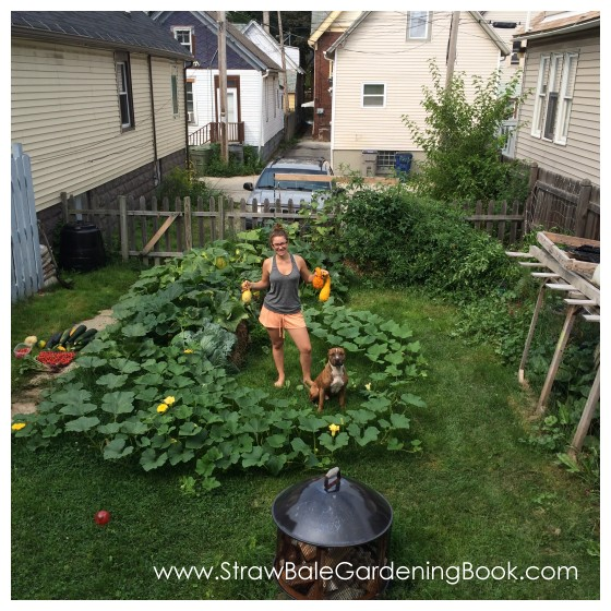 While This Straw Bale Garden Might Be Small, The Harvest Was Anything But…