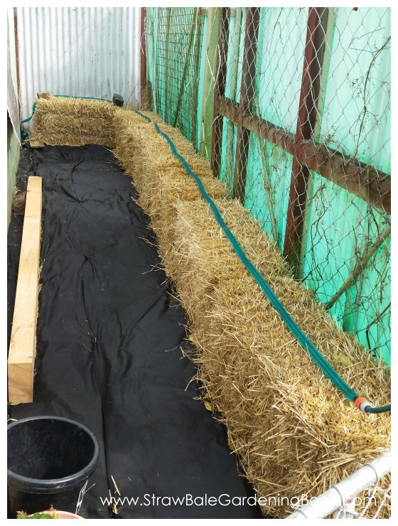 Straw Bale Garden Soaker Hose