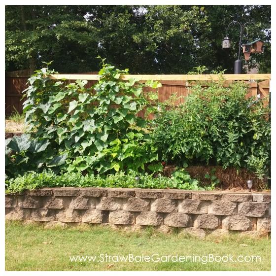Straw Bale Garden Setup Landscaped Into The Garden...